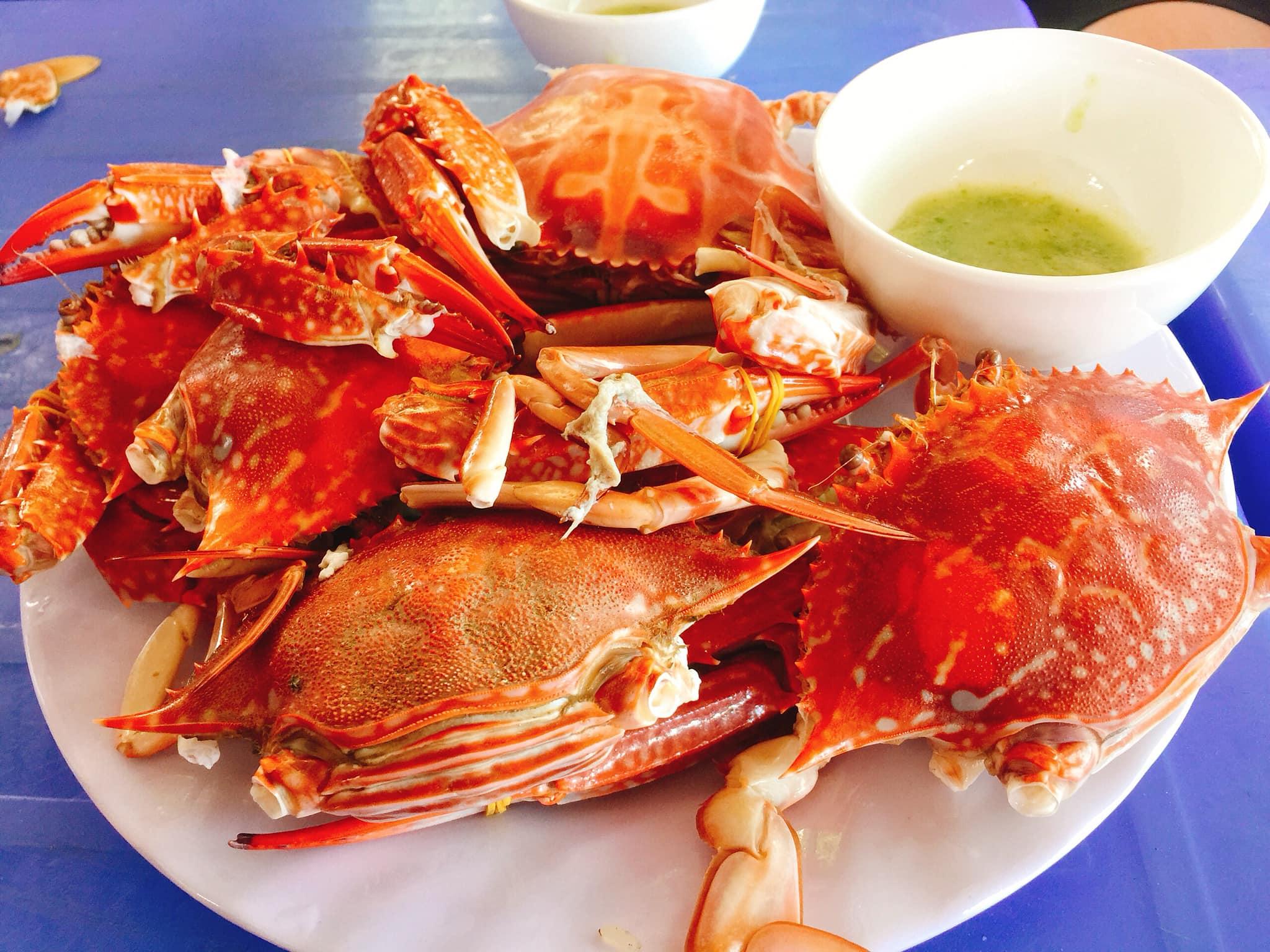 Kinh nghiệm phượt du lịch Vĩnh Hy tự túc: Ngắm san hô, ăn hải sản