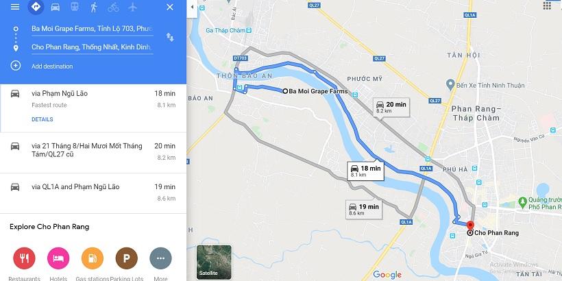 Vườn nho Ninh Thuận: ở đâu, mùa nho tháng mấy, kinh nghiệm vé tham quan