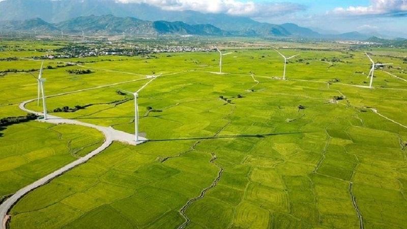 Cánh đồng quạt gió Đầm Nại ở Ninh Thuận: Kinh nghiệm tham quan chi tiết