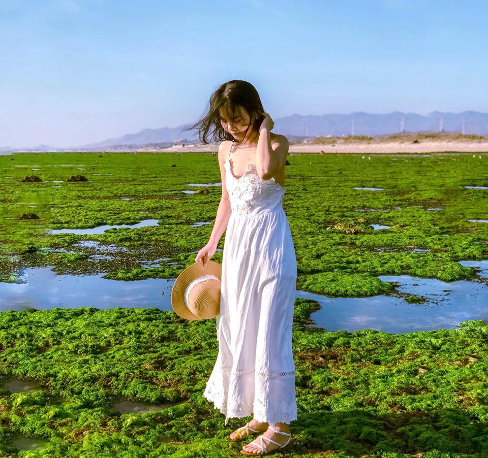 Cánh đồng rong biển Ninh Thuận: Hướng dẫn đường đi kinh nghiệm tham quan